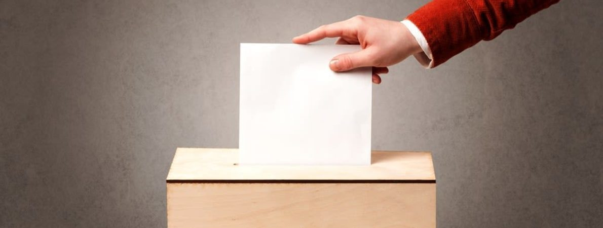 Photo of person posting vote paper.